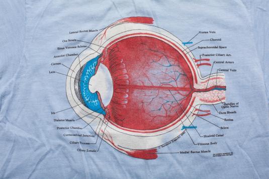 Vintage 80s Medical Eyeball Anatomy Diagram T
