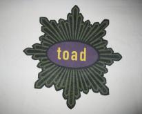1991 TOAD THE WET SPROCKET