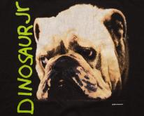 1992 Dinosaur Jr Bulldog  Whatever's Cool With Me 90s