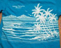 80s Island Paradise Hawaii , Ocean Palm Trees