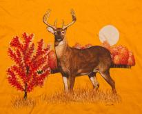 80s 8-Point Buck Woodland Illustration