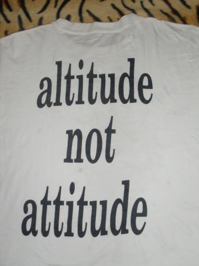 Vintage Early 90's Smashing Pumpkins T-shirt