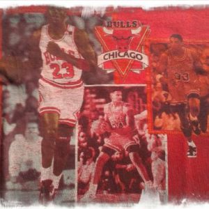chicago bulls 1990
