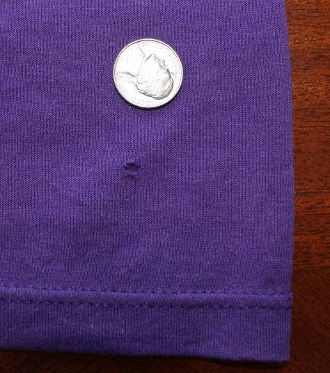 Minnesota Vikings vintage purple Champion t-shirt M/S