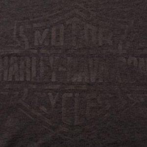 3D Emblem Harley-Davidson Logo T-Shirt, Distressed Tee