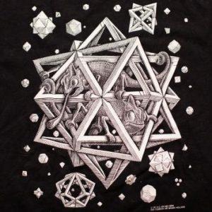 "M.C. Escher ""Stars"" T-Shirt, Caged Chameleons, Vintage 90s"