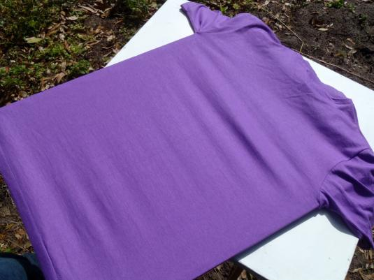 Vintage 1991 Paso Fino Nationals North Carolina Purple T-Shirt S