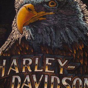 Vintage Harley Davidson Eagle Devils Staircase T-Shirt M