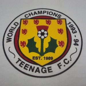 VINTAGE 1993 TEENAGE FANCLUB THIRTEEN T-SHIRT