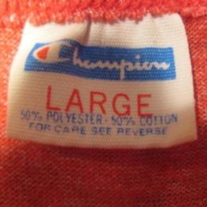 Vintage 1970's UWEC t-shirt, Champion blue bar, Eau Claire