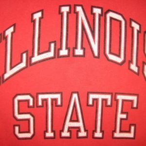 Vintage 1980's Illinois State t-shirt, Champion brand, large
