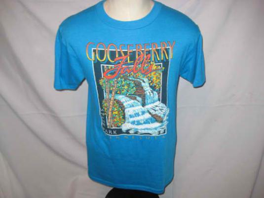 Vintage 1980's Gooseberry Falls t-shirt, M L
