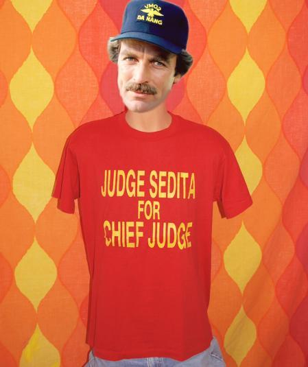 vintage CHIEF JUDGE sedita new york politics t-shirt