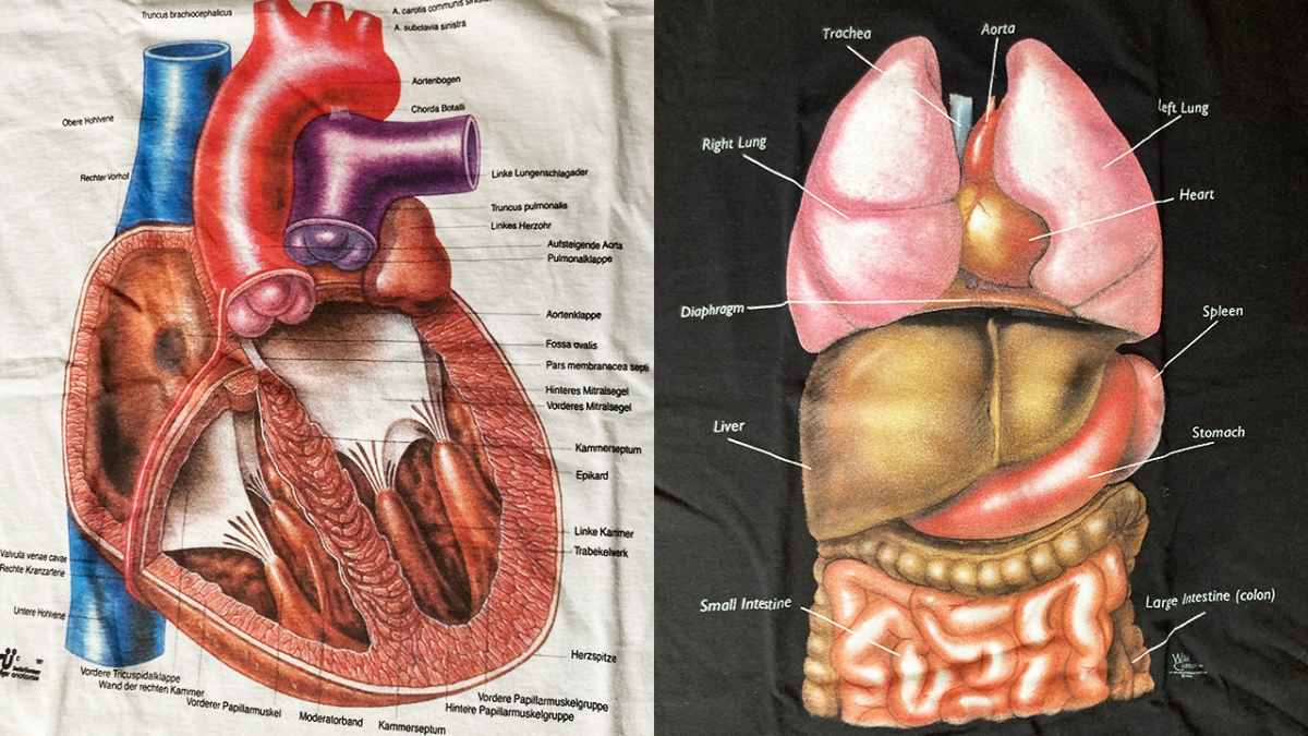 Vintage Anatomy T-Shirt Collection